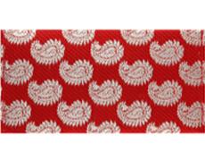 Paisley Wedding Shagun Envelope in Rich Red And Golden